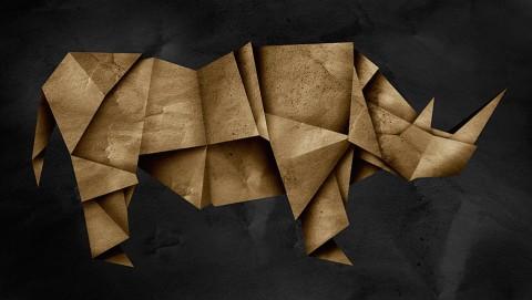 Rhinorigami