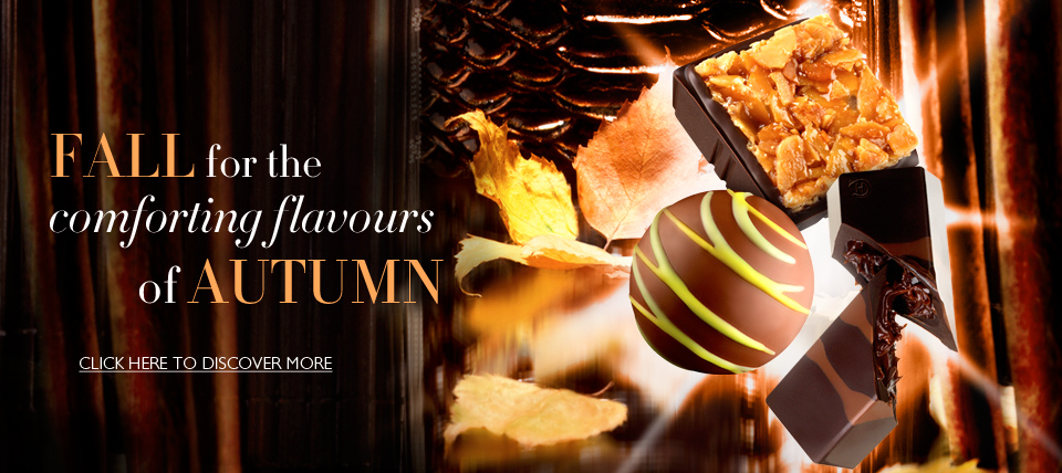 Autumn11 960x428 px homepage banner for Hotel Chocolat